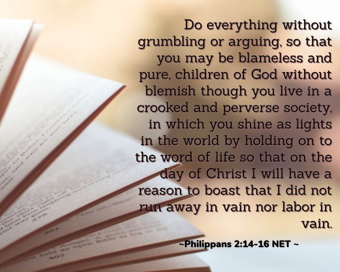 verse for 14th